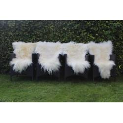 4 x Økogarvede islandske lammeskind